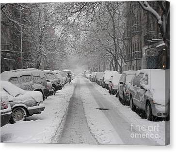 Snow Cover Canvas Print by James Dolan