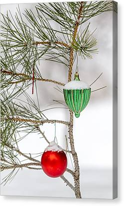Snow Covered Christmas Ornaments Canvas Print by Teri Virbickis