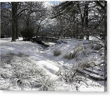 Snow Covered Dream Canvas Print