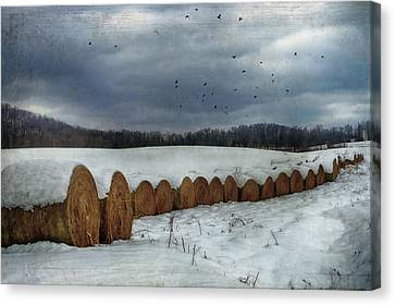 Snow Covered Hay Bales Canvas Print by Kathy Jennings