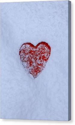 Snow-covered Heart Canvas Print