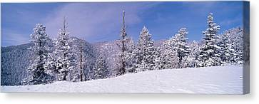 Snow Covered Landscape, Colorado, Usa Canvas Print by Panoramic Images