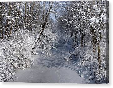 Snow Covered River Canvas Print by Thomas Fouch