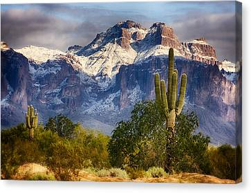Snow Covered Superstitions  Canvas Print