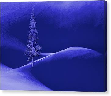Mountain Cabin Canvas Print - Snow Covered Tree And Mountains Night by David Dehner