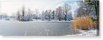 Snow Covered Trees Near A Lake, Lake Canvas Print