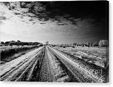 snow covered untreated rural small road in Forget Saskatchewan Canada Canvas Print by Joe Fox