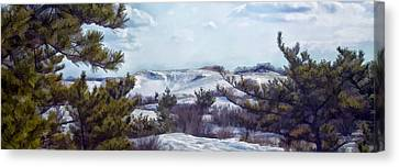 Canvas Print featuring the photograph Snow Covered Dunes by Constantine Gregory