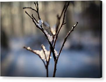 Canvas Print featuring the photograph Snow Crystal Sunrise by Glenn DiPaola