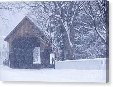 Snow Day Canvas Print by Alan L Graham