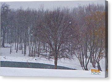 Snow Day Canvas Print by Chris Berry