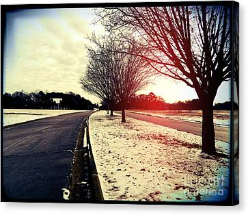 Snow Day In Texas Canvas Print by Jose Benavides