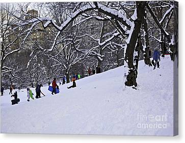 Snow Day In The Park Canvas Print by Madeline Ellis