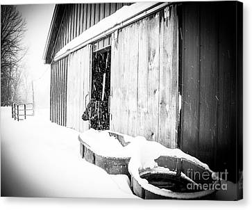 Snow Day Canvas Print by Sue OConnor