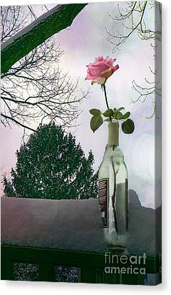 Snow Days Of Wine And Roses Canvas Print by Terry Weaver