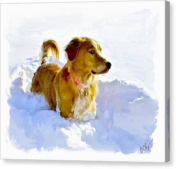 Snow Dog Canvas Print by Bradley Clay