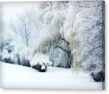 Weeping Willow Canvas Print - Snow Dream by Julie Palencia