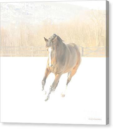 Canvas Print featuring the photograph Snow Fun by Carol Lynn Coronios