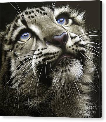 Snow Leopard Cub Canvas Print by Jurek Zamoyski