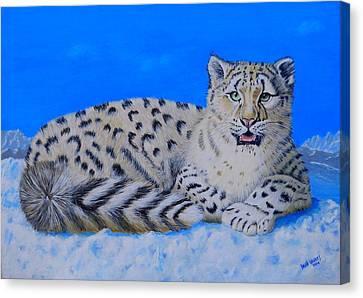 Snow Leopard Canvas Print by David Hawkes