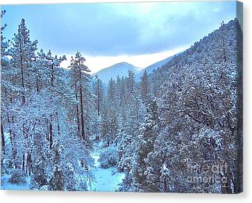 Snow Magic Canvas Print by Gem S Visionary