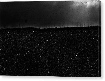 Snow Nightfall Canvas Print