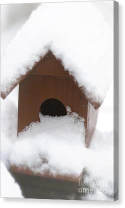 Snow On Bird House Canvas Print by Birgit Tyrrell