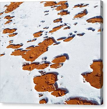 Snow On Dunes Canvas Print