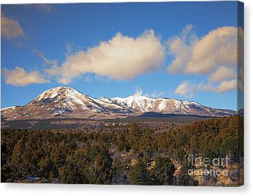 Flagstaff Canvas Print - Snow On The Peaks by Mike Dawson