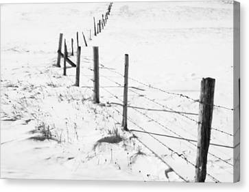 Snow Packed Fence Line Canvas Print