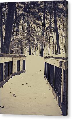 Snow Path Canvas Print by Dawdy Imagery