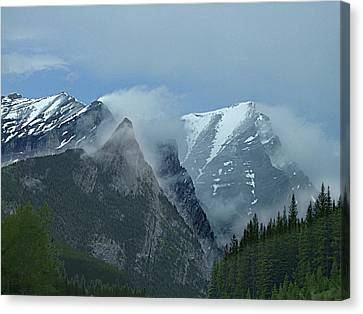 Snow Plumes Canvas Print by George Cousins