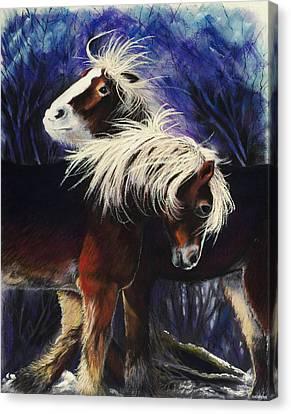 Snow Ponies Canvas Print