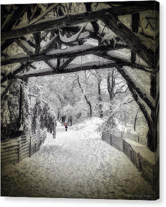 Snow Scene In Central Park Canvas Print