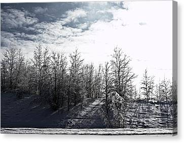 Snow Shadows Canvas Print by Dawdy Imagery