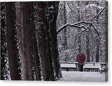 Canvas Print featuring the photograph Snow by Simona Ghidini
