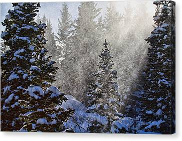 Snow Squalls Canvas Print by Jim Garrison