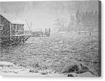 Snow Storm In Bass Harbor On Mount Desert Island Maine Canvas Print by Keith Webber Jr