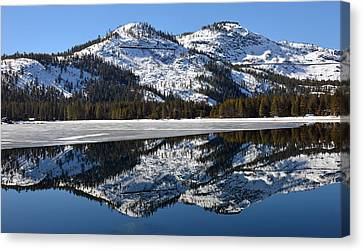 Snow Top Canvas Print by Michael Brown