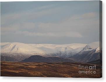 Snow Topped Mountains Canvas Print by David Grant