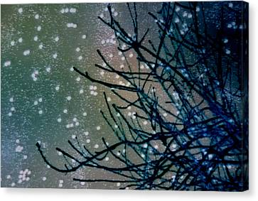 Snow Twigs Canvas Print by Jan Amiss Photography
