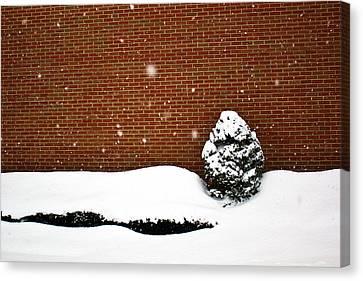 Snow Wall Canvas Print by Tim Buisman