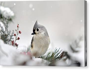 Snow White Tufted Titmouse Canvas Print by Christina Rollo