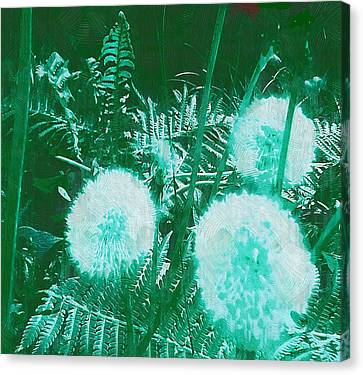 Snowballs In The Garden Canvas Print by Pepita Selles