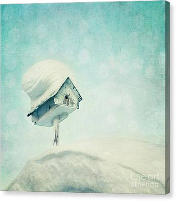 Snowbird's Home Canvas Print by Priska Wettstein