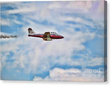 Canvas Print featuring the photograph Snowbirds Number 9 by Cathy  Beharriell