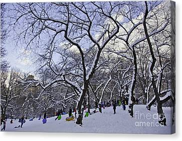 Snowboarders In Central Park Canvas Print by Madeline Ellis