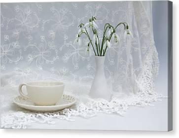 Snowdrops At Teatime Canvas Print by Ann Garrett