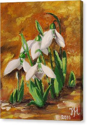 Snowdrops Canvas Print by Nina Mitkova