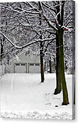 Snowed In Canvas Print by Chris Berry